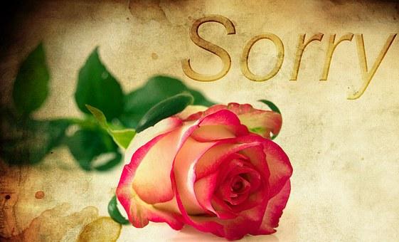 Ospravedlniť sa alebo nie